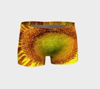 Aperçu de Sunflower