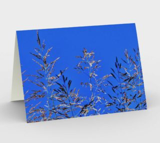 Hay Reaching to Blue Sky 6409 L preview