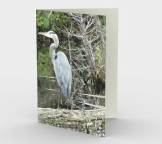 Moment in Time - Heron preview