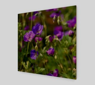 Purple Cranesbill Wall Art Canvas preview