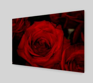 Red Roses preview