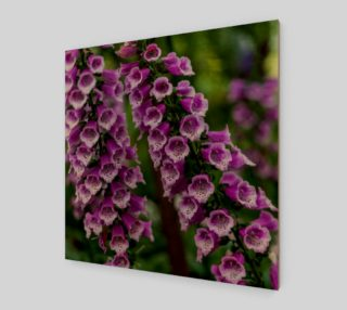 Aperçu de Purple Foxgloves Wall Art