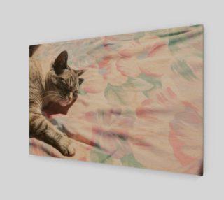 Aperçu de Gray Cat In Sun Print