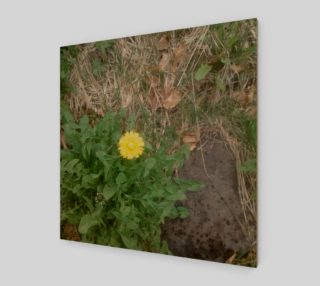 Dandelion and Rock Wall Art preview
