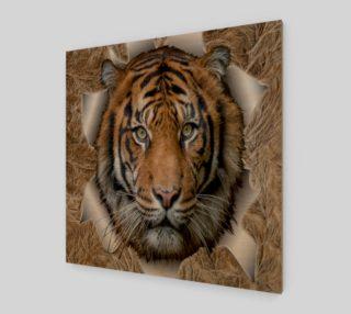 Bangal Tiger preview