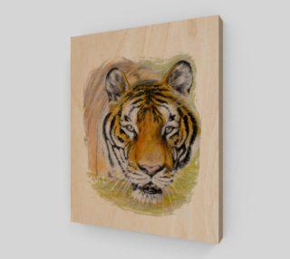 Aperçu de Hoover Tiger