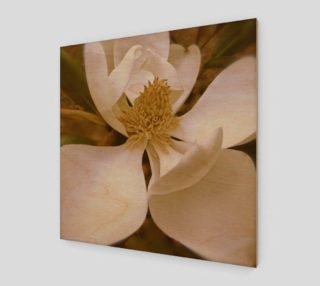 Aperçu de Angelic Magnolia