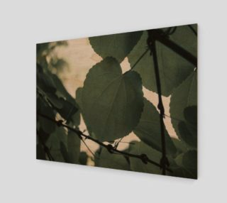 Green Leaves preview