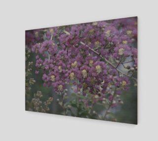 Aperçu de Purple Rain
