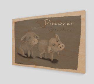 Aperçu de Discover