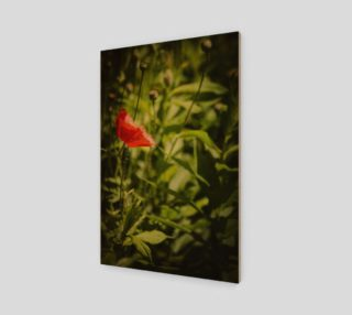 Poppy Art Print  preview