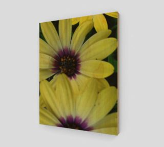Aperçu de Delectable Daisy in Yellow & Purple 11