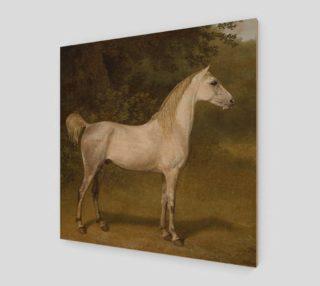 Aperçu de Vintage Stallion by Jacques-Laurent Agasse Wood Wall Art