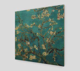 Aperçu de almond blossoms