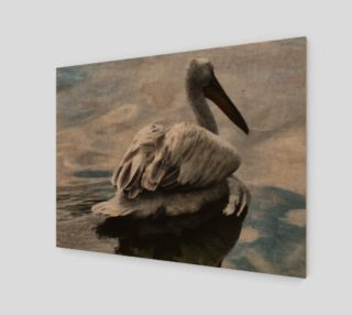 Aperçu de Lonley Pelican(4:3)