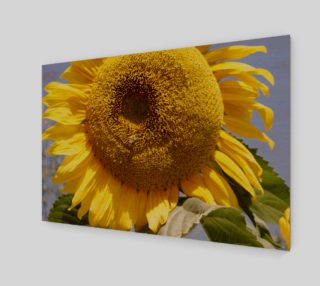 Sunflower with Bee Wall Art preview