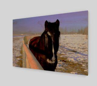 Mahogany Bay Draft Horse Wall Art preview