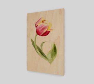 Tulip preview