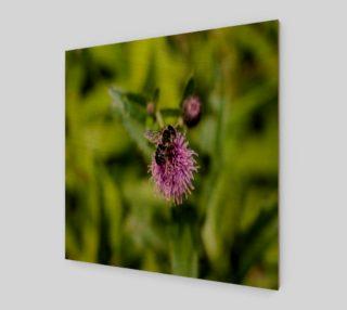 Aperçu de A Bee on a Purple Flower Wall Art