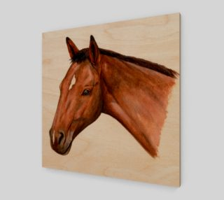 Bay horse portrait preview