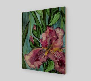 Pink Garden Iris 11 x 14 preview
