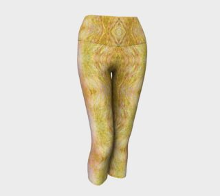 Xepa Ogee Capris preview