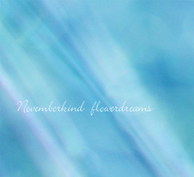 NOVEMBERKIND flowerdreams photo