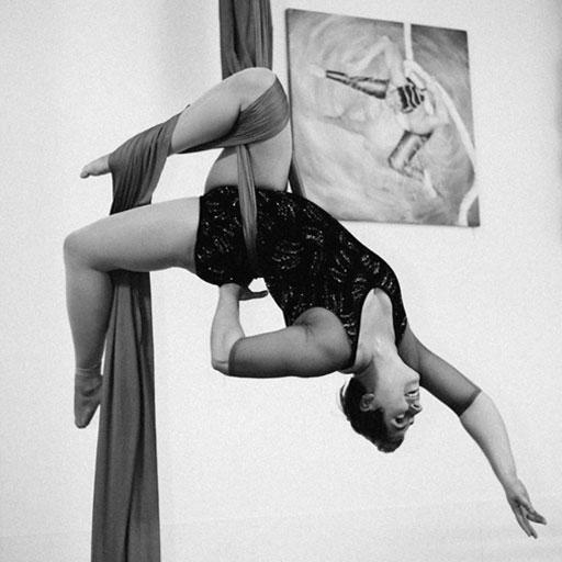 Flying Fox Studio - Michelle Prosek photo