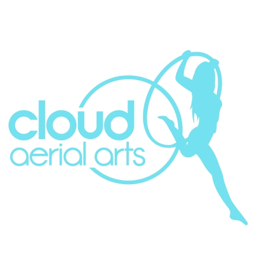 Cloud Aerial Arts profile picture