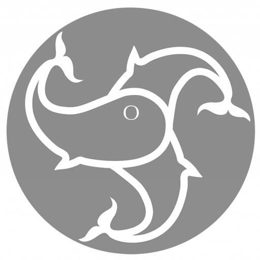 triQita profile picture