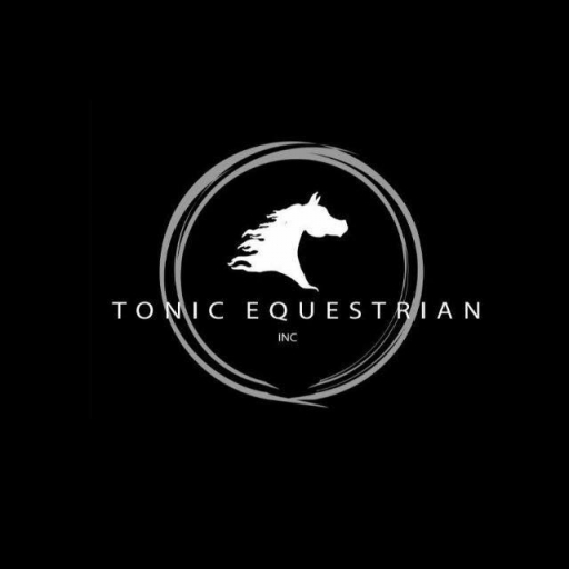 HandGallop Studio at Tonic Equestrian  photo