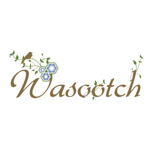 Photo de Wasootch