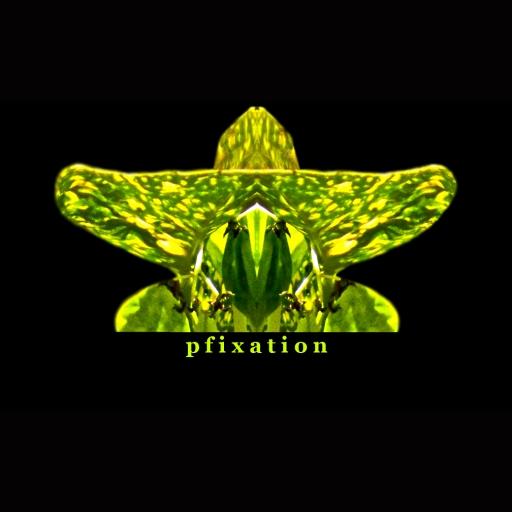 pfixation profile picture