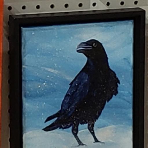 Wild Crow Studio photo