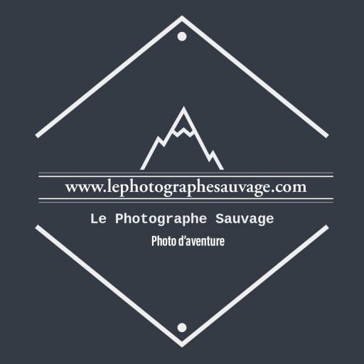Le Photographe sauvage picture