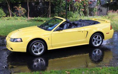 Photo 2001 Ford Mustang SVT Cobra Base SVT Cobra 2DR Convertible
