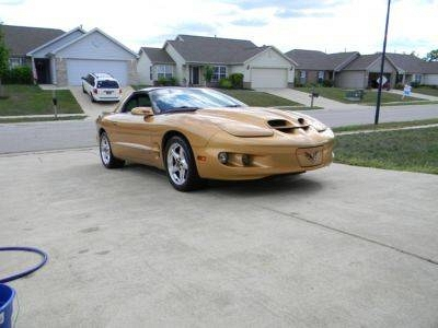 Photo 1998 Pontiac Firebird Formula WS6 1 of 7 Sport Gold, trans am