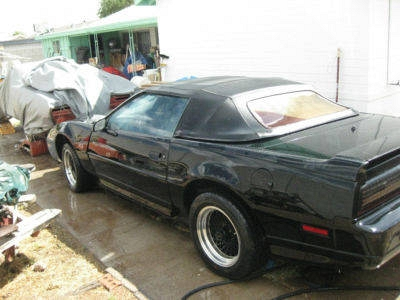 Photo 1988 Pontaic Trans Am GTA Convertible - ASC Conversion
