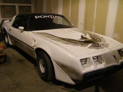 Photo 1981 Pontiac Firebird Trans Am Nascar Pace Car 4.9 Turbo