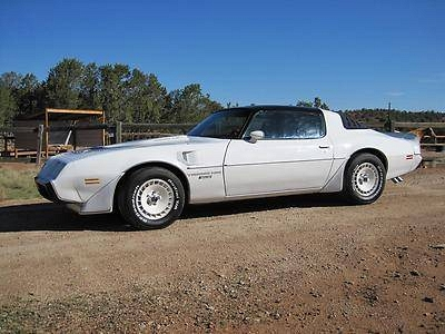 Photo 1981 Nascar Special Edition Trans Am