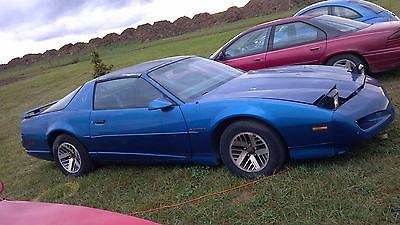 Photo 1991 Pontiac Firebird Base Coupe 2-Door 3.1L
