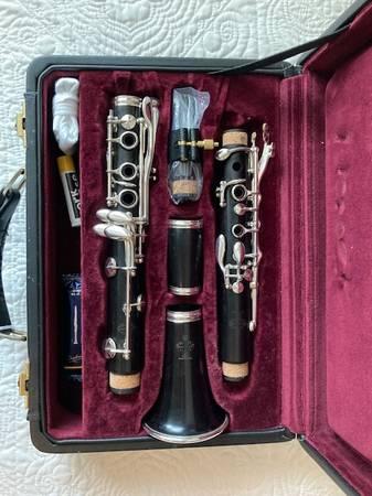 Photo Buffet Cron Professional R13 Clarinet - $1,499 (Watkinsville)