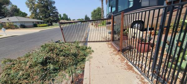 Photo Wrought iron fence gates - $1 (NW Bako)