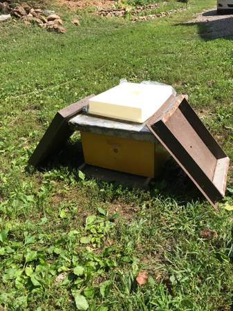 Photo Beehive. Complete hive - deep box, 10 frames, bottom board, cover,  - $140 (Manchester)
