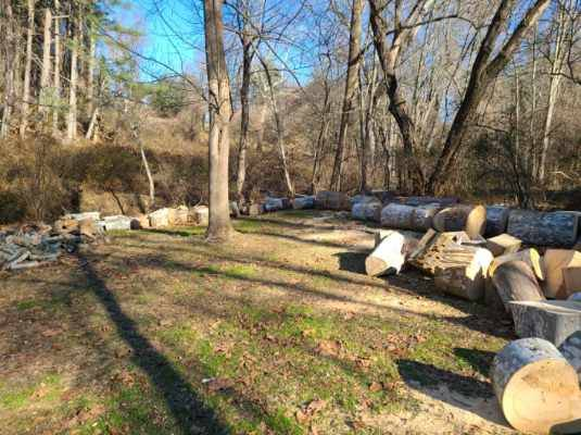 Photo Free Firewood - You Load and Haul (Fallston Forest Hill)