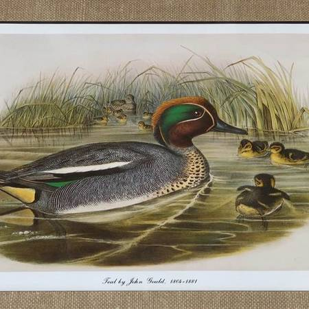 Photo Pair of Duck prints in matching wood frames with burlap mat by John G - $25 (BALTIMORE)