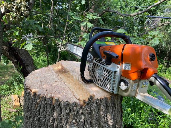 Photo Tree removal, storm damage cleanup. (Forest Hill)