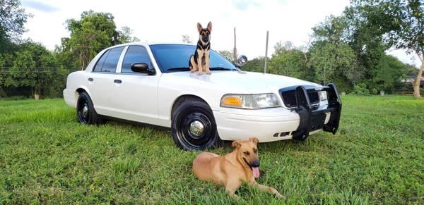 Photo 2011 Ford Crown Victoria Police Interceptor Sedan - $4,999 (Pro Mas Auto Sales  Houston)