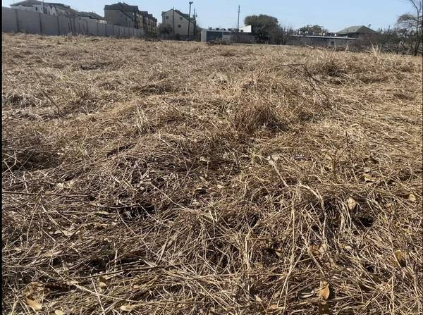 Photo Free hay if you cut it (Hilcroft and westheimer)