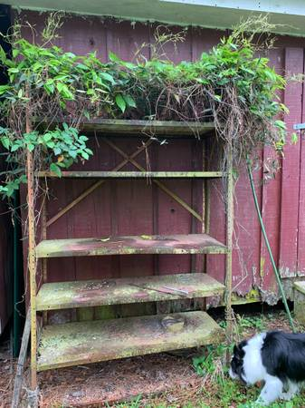 Photo Rusty Garden Shelves (Lafayette, LA)